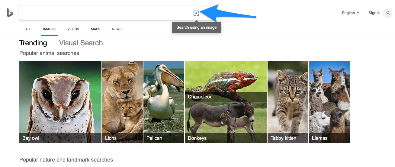 Bing_Reverse_Photo_Lockup_Search