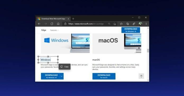 Microsoft-Edge-Smart-Copy-696x365-1