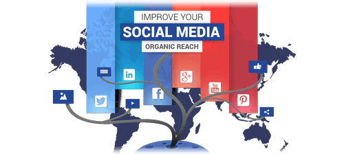 improve-your-social-media-organic-reach