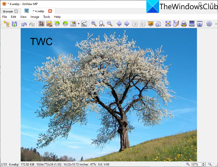 xnview_how-to-edit-webp-image-windows-11-10-e1626175545975